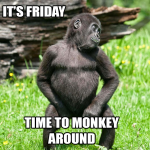 monkeyfriday
